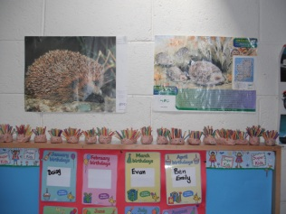 Room 10 learnt about hedgehog